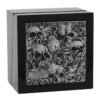 007_HCW806,-HCW810-Lost-Skulls-Watch-Box-31164